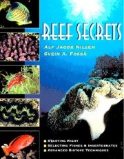 Reef Secrets cover.jpg